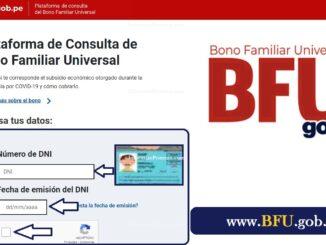 www bfu gop pe consultar