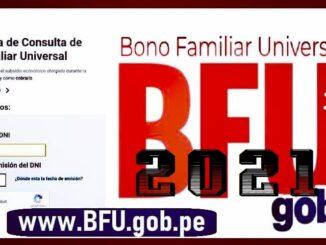 segundo bono familiar universal bdu enero 2021