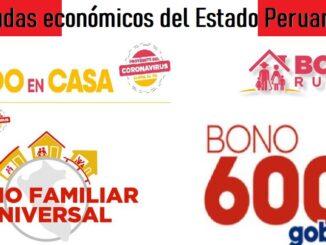Ayudas económicos del Estado Peruano