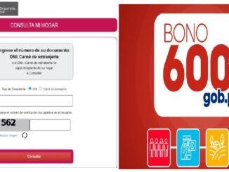 CLASIFICACION DE HOGARES PARA EL BONO 600