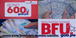 BFU 760 Y BONO 600: Consulta si recibirás ambas ayudas del estado