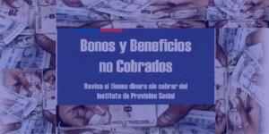 Bono Independiente y Bono Familiar: revisa si aún tienes pendiente el cobro del bono