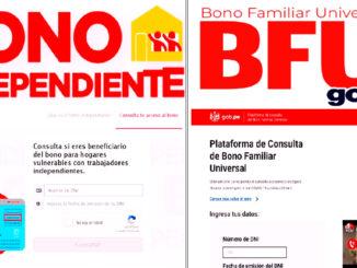 Consulta el Bono Independiente o el Bono Familiar Universal