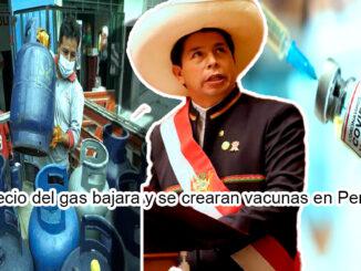 El precio del gas bajara y se crearan vacunas en Perú